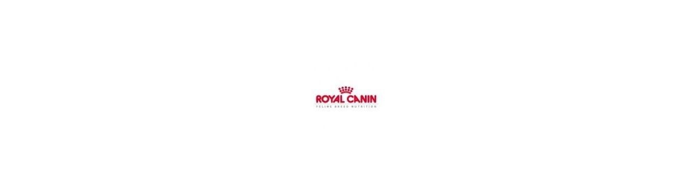 Piensos para gatos Royal Canin clasificados por razas