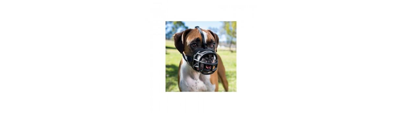 Bozales para perros en oferta - Piensosmadrid
