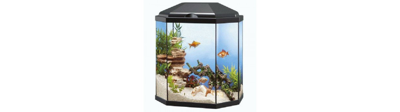 Productos para peces de agua dulce - Piensosmadrid