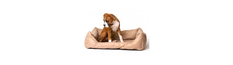 Camas y colchones para perros