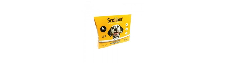 Collares antiparasitarios para perros al mejor precio - Piensosmadrid