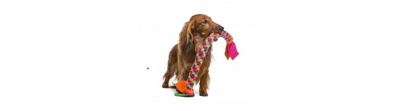 Juguetes para perros al mejor precio - Piensosmadrid