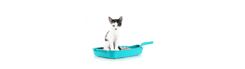 Arena, viruta y bandejas para gatos
