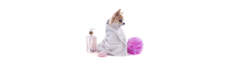 Higiene, salud y belleza para perros